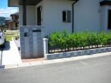 爽やかな雰囲気の生垣と門扉