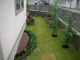 緑豊かな空間へ、変身!